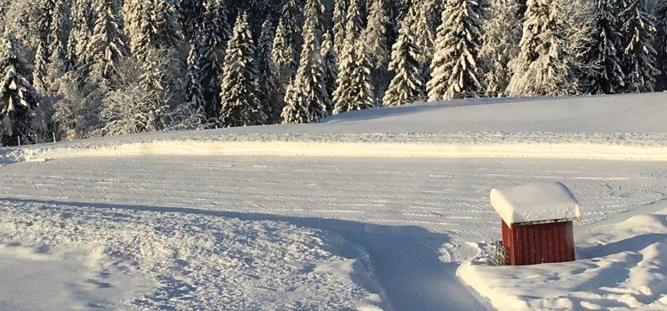Vintertreninger